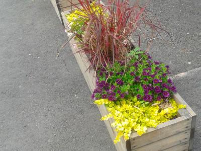 Bac à fleurs Rue St-Jacques